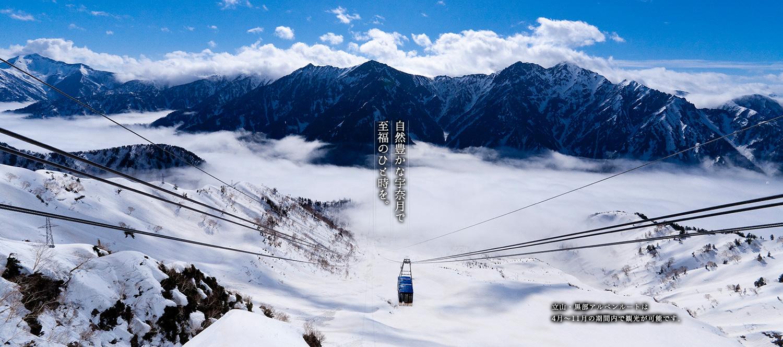 立山・黒部アルペンルートは4月〜11月の期間内で観光が可能です