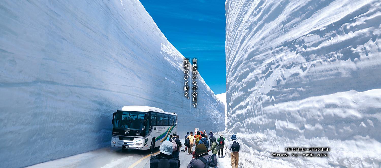 4月下旬〜6月まで立山『雪の大谷』ウォークが楽しめます。